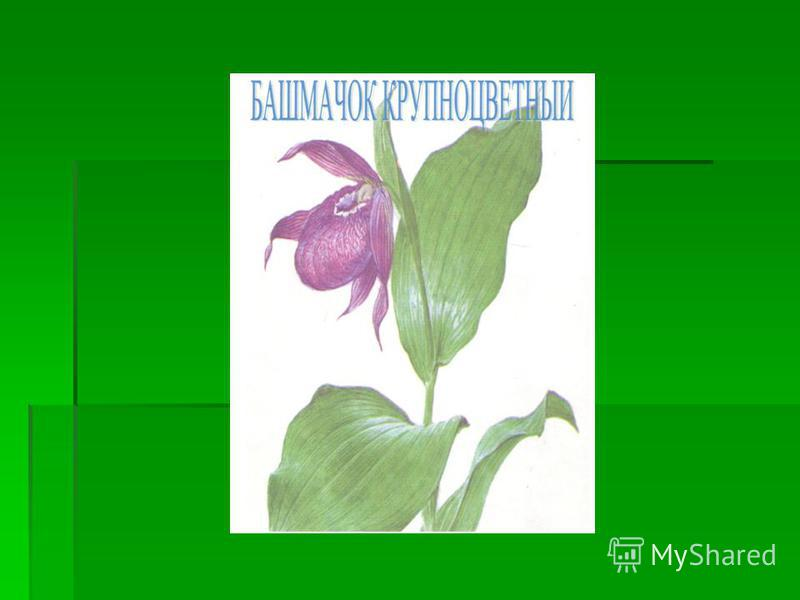 ebook handbook on