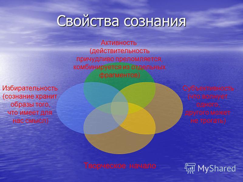 Активность (действительность причудливо преломляется, комбинируется из отдельных фрагментов) Субъективность (что волнует одного, другого может не трогать) Творческое начало Избирательность (сознание хранит образы того, что имеет для нас смысл) Свойст