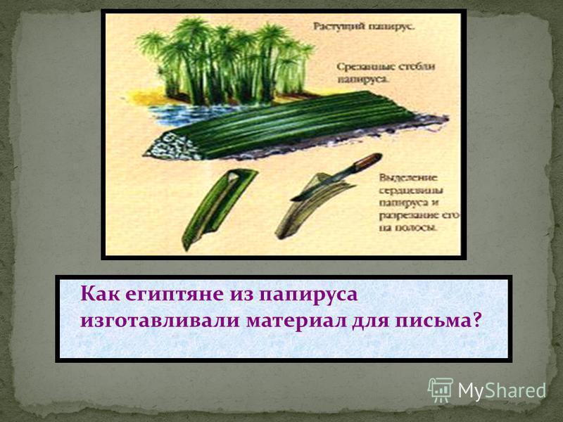 Как египтяне из папируса изготавливали материал для письма?
