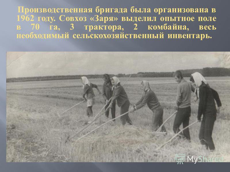 Производственная бригада была организована в 1962 году. Совхоз « Заря » выделил опытное поле в 70 га, 3 трактора, 2 комбайна, весь необходимый сельскохозяйственный инвентарь.