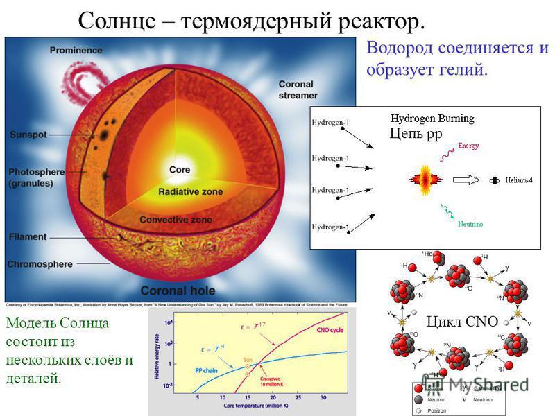 Солнце – термоядерный реактор. Водород соединяется и образует гелий. Цикл CNO Цепь pp Модель Солнца состоит из нескольких слоёв и деталей.