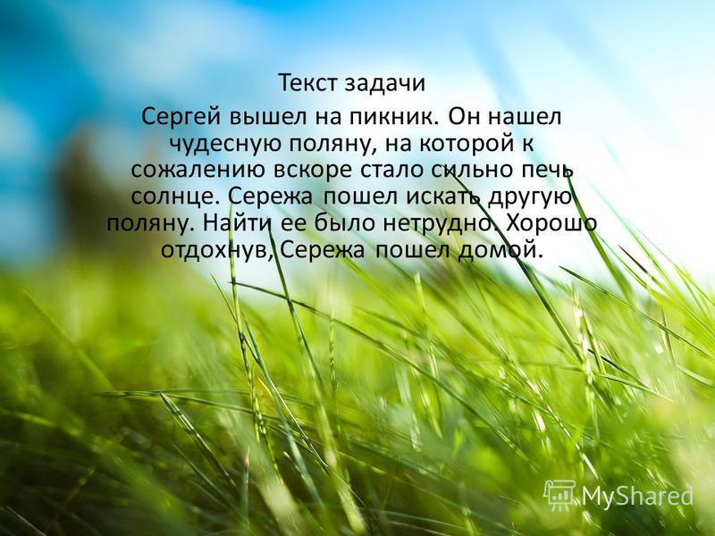 Текст задачи Сергей вышел на пикник. Он нашел чудесную поляну, на которой к сожалению вскоре стало сильно печь солнце. Сережа пошел искать другую поляну. Найти ее было нетрудно. Хорошо отдохнув, Сережа пошел домой.