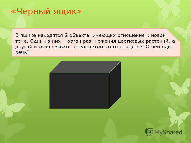 «Черный ящик» В ящике находятся 2 объекта, имеющих отношение к новой теме. Один из них – орган размножения цветковых растений, а другой можно назвать результатом этого процесса. О чем идет речь?