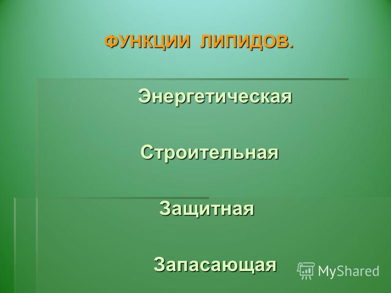 ФУНКЦИИ ЛИПИДОВ. Энергетическая Энергетическая Строительная Строительная Защитная Запасающая Запасающая