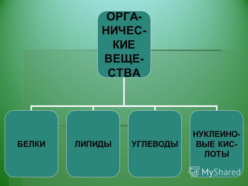 ОРГА-НИЧЕС- КИЕ ВЕЩЕ- СТВА БЕЛКИЛИПИДЫУГЛЕВОДЫ НУКЛЕИНО- ВЫЕ КИС- ЛОТЫ