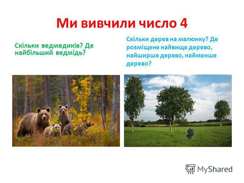 Ми вивчили число 4 Скільки ведмедиків? Де найбільший ведмідь? Скільки дерев на малюнку? Де розміщене найвище дерево, найширше дерево, найменше дерево?