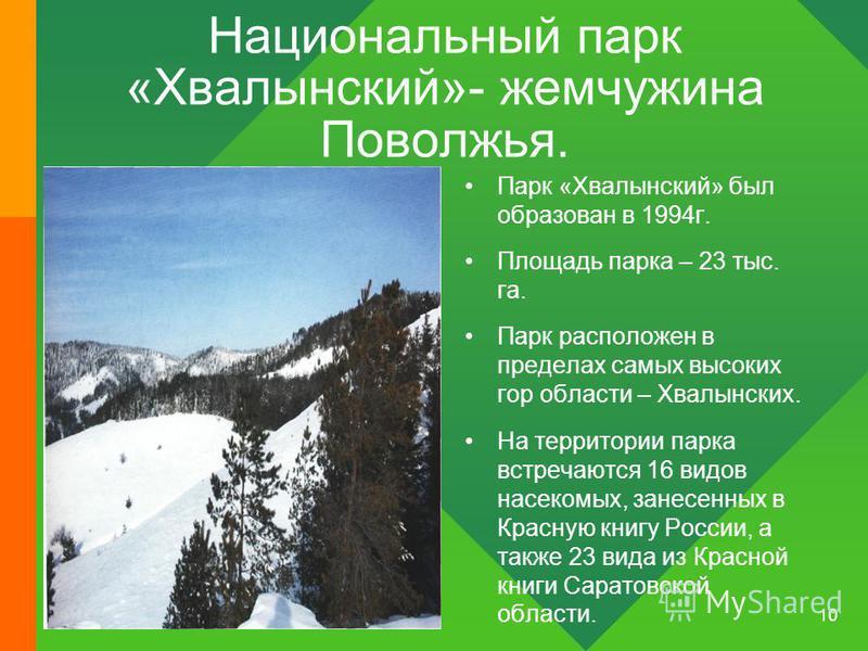 10 Национальный парк «Хвалынский»- жемчужина Поволжья. Парк «Хвалынский» был образован в 1994 г. Площадь парка – 23 тыс. га. Парк расположен в пределах самых высоких гор области – Хвалынских. На территории парка встречаются 16 видов насекомых, занесе