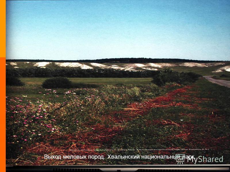 11 Определите обязательства Коллективные обязательства Личные обязательства Выход меловых пород. Хвалынский национальный парк.