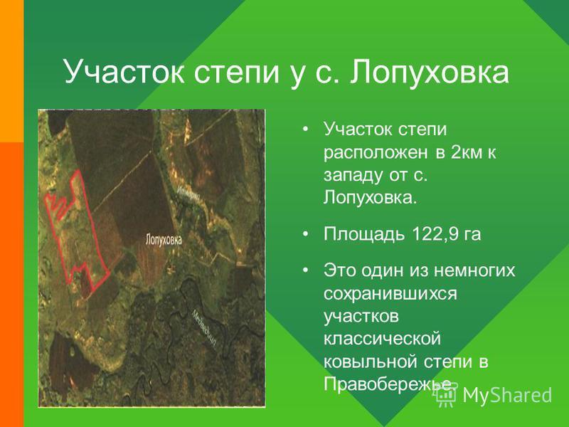 Участок степи у с. Лопуховка Участок степи расположен в 2 км к западу от с. Лопуховка. Площадь 122,9 га Это один из немногих сохранившихся участков классической ковыльной степи в Правобережье.