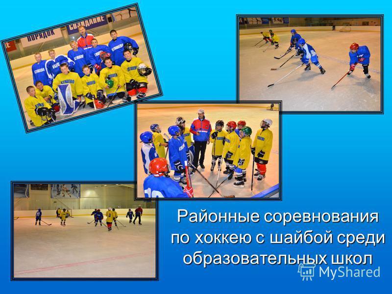 Районные соревнования по хоккею с шайбой среди образовательных школ