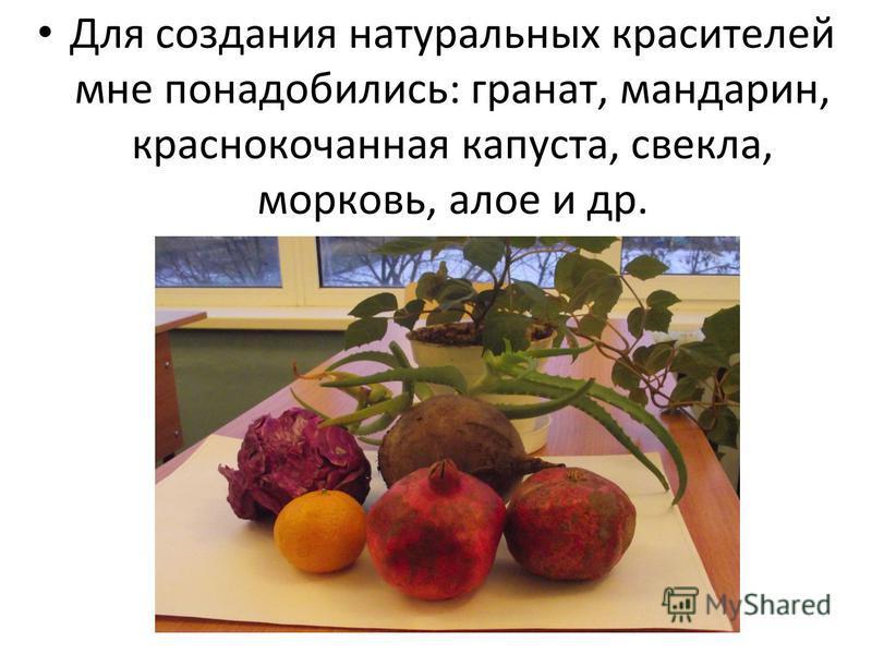 Для создания натуральных красителей мне понадобились: гранат, мандарин, краснокочанная капуста, свекла, морковь, алое и др.
