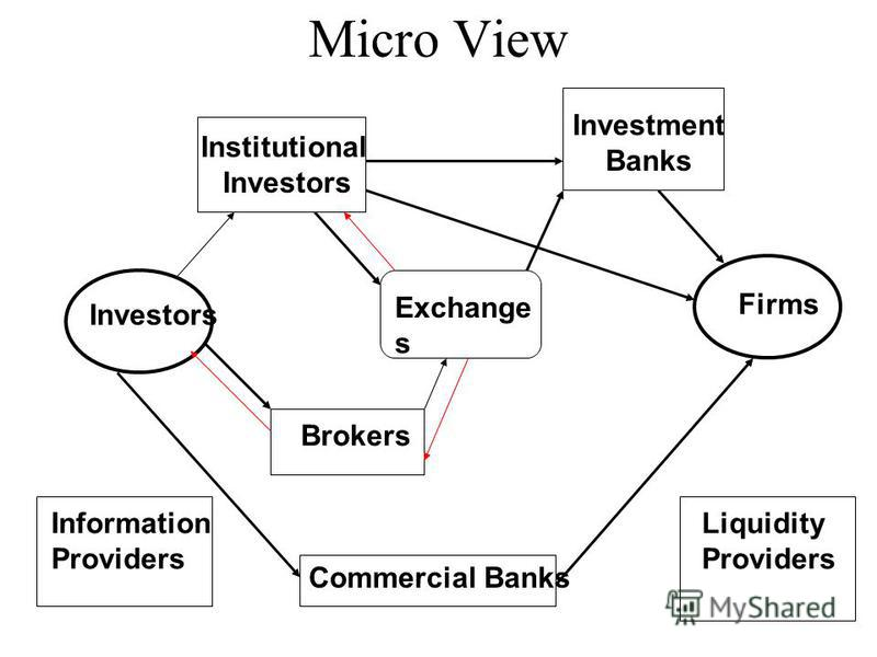 Micro View Investors Firms Commercial Banks Exchange s Institutional Investors Investment Banks Brokers Information Providers Liquidity Providers