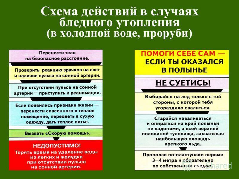 Схема действий в случаях бледного утопления (в холодной воде, проруби)