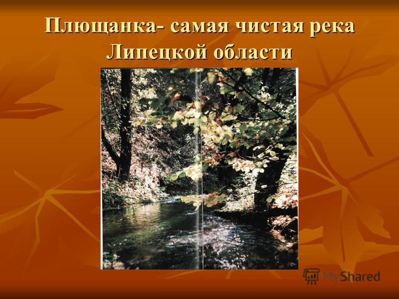 Плющанка- самая чистая река Липецкой области