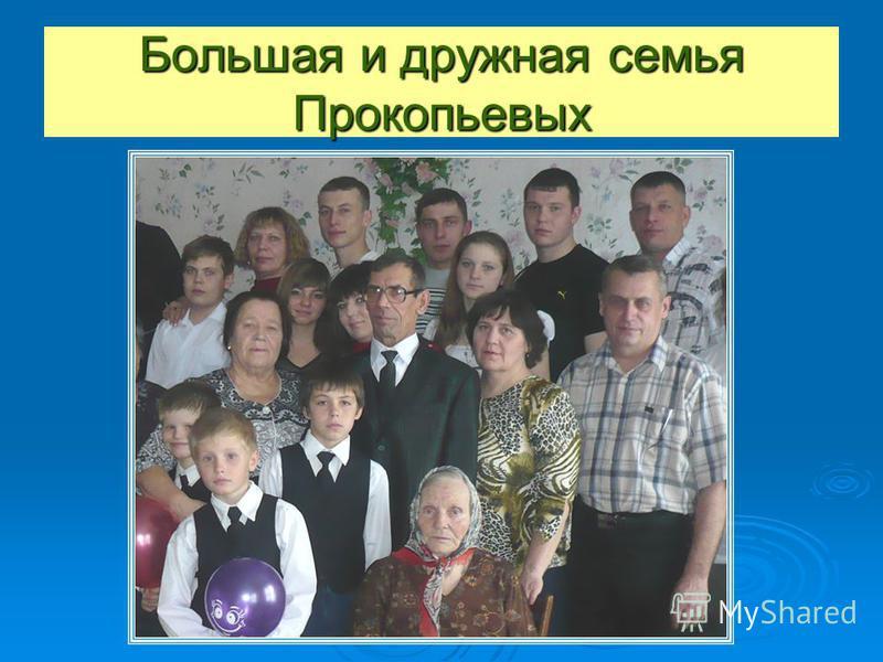 Большая и дружная семья Прокопьевых