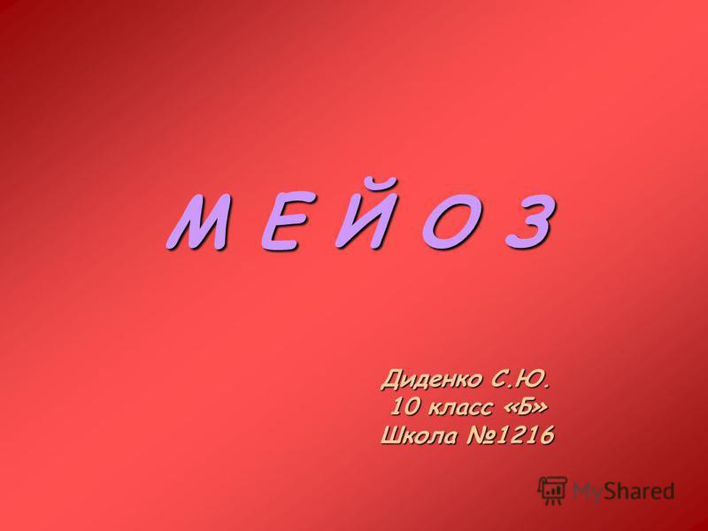 М Е Й О З Диденко С.Ю. 10 класс «Б» Школа 1216