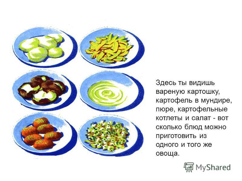 Здесь ты видишь вареную картошку, картофель в мундире, пюре, картофельные котлеты и салат - вот сколько блюд можно приготовить из одного и того же овоща.