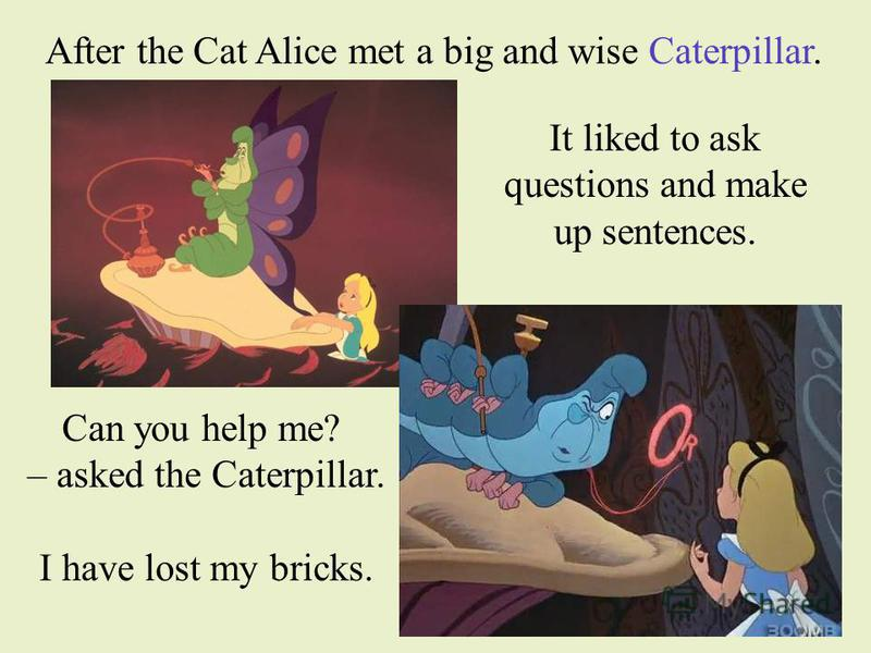 After the Cat Alice met a big and wise Caterpillar. It liked to ask questions and make up sentences. Can you help me? – asked the Caterpillar. I have lost my bricks.