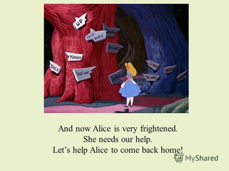 And now Alice is very frightened. She needs our help. Lets help Alice to come back home!