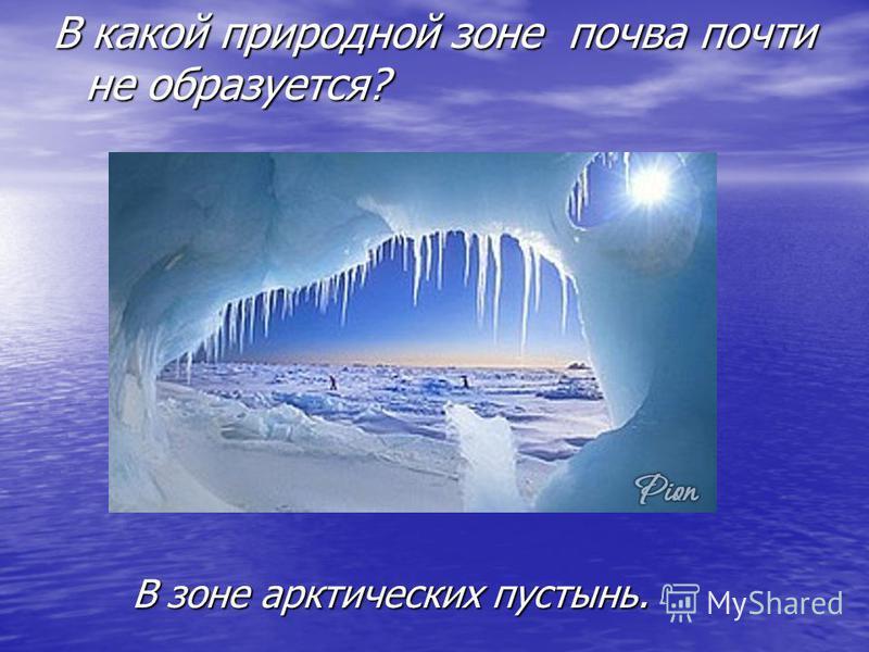 В какой природной зоне почва почти не образуется? В зоне арктических пустынь.