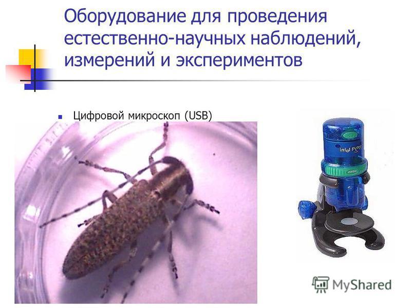 Оборудование для проведения естественно-научных наблюдений, измерений и экспериментов Цифровой микроскоп (USB)