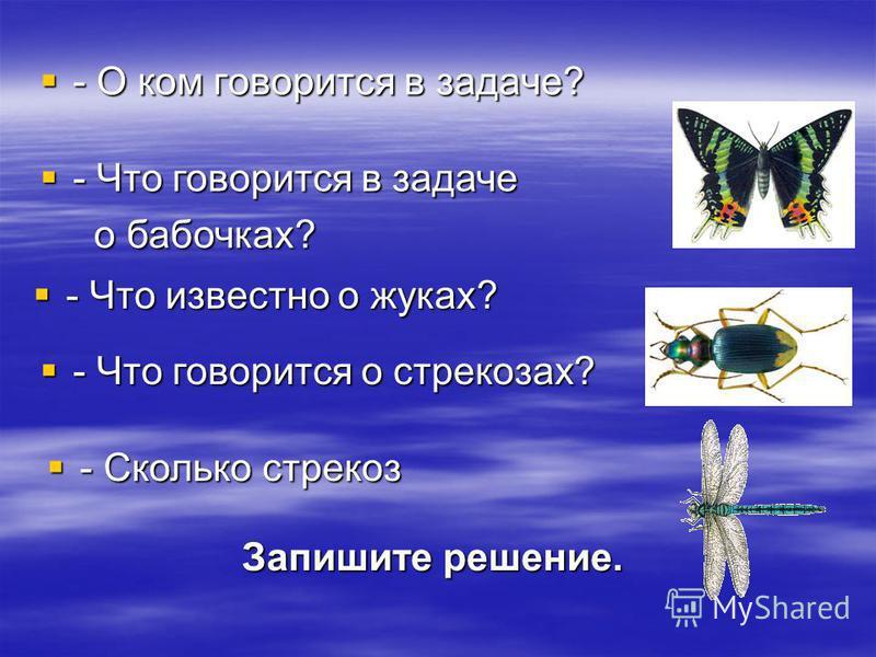 - О ком говорится в задаче? - Что говорится в задаче о бабочках? - Что известно о жуках? - Что говорится о стрекозах? - Сколько стрекоз - Сколько стрекоз Запишите решение.