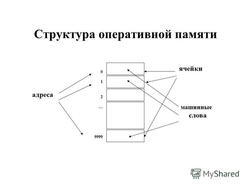 Структура оперативной памяти 0 1 2 … 9999 ячейки машинные слова адреса