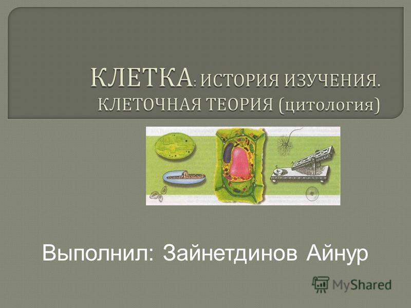 Выполнил: Зайнетдинов Айнур