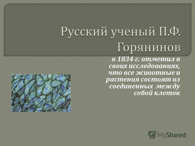 в 1834 г. отметил в своих исследованиях, что все животные и растения состоят из соединенных между собой клеток