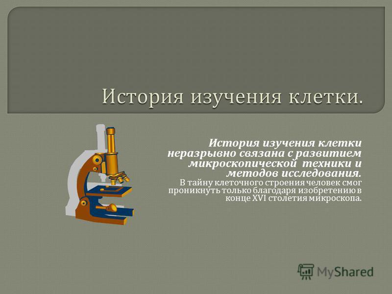 История изучения клетки неразрывно связана с развитием микроскопической техники и методов исследования. В тайну клеточного строения человек смог проникнуть только благодаря изобретению в конце XVI столетия микроскопа.