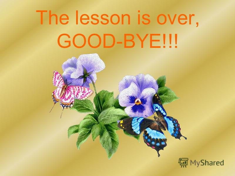 The lesson is over, GOOD-BYE!!!