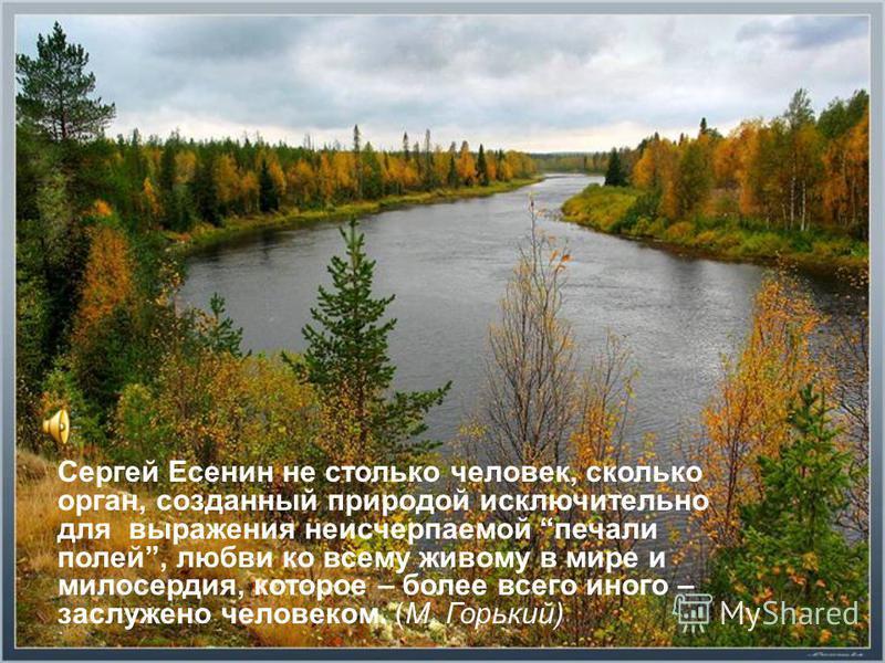 Сергей Есенин не столько человек, сколько орган, созданный природой исключительно для выражения неисчерпаемой печали полей, любви ко всему живому в мире и милосердия, которое – более всего иного – заслужено человеком. (М. Горький)