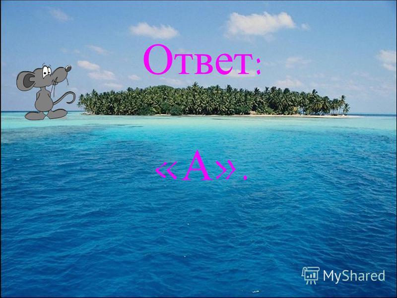 Что обозначает имя существительное? А) предметБ) признакВ) действие Г) признак признака