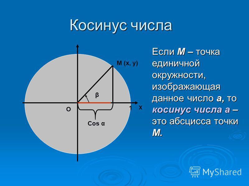 Косинус числа Если М – точка единичной окружности, изображающая данное число а, то косинус числа а – это абсцисса точки М. β М (х, у) О Cos α Х 1