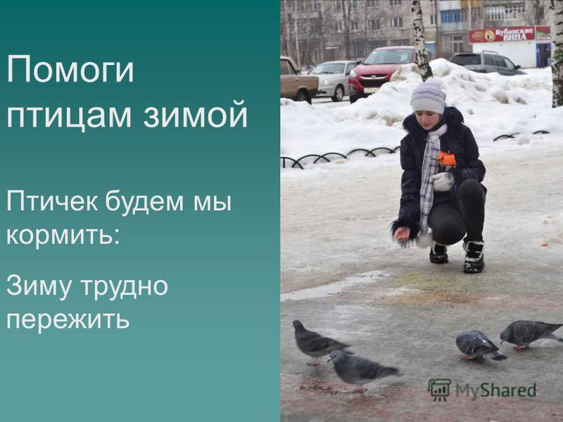 Помоги птицам зимой Птичек будем мы кормить: Зиму трудно пережить