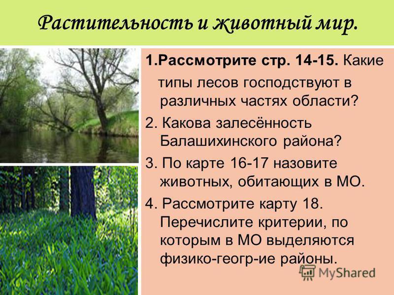 Растительность и животный мир. 1. Рассмотрите стр. 14-15. Какие типы лесов господствуют в различных частях области? 2. Какова залесённость Балашихинского района? 3. По карте 16-17 назовите животных, обитающих в МО. 4. Рассмотрите карту 18. Перечислит