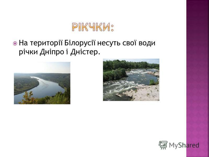 На території Білорусії несуть свої води річки Дніпро і Дністер.
