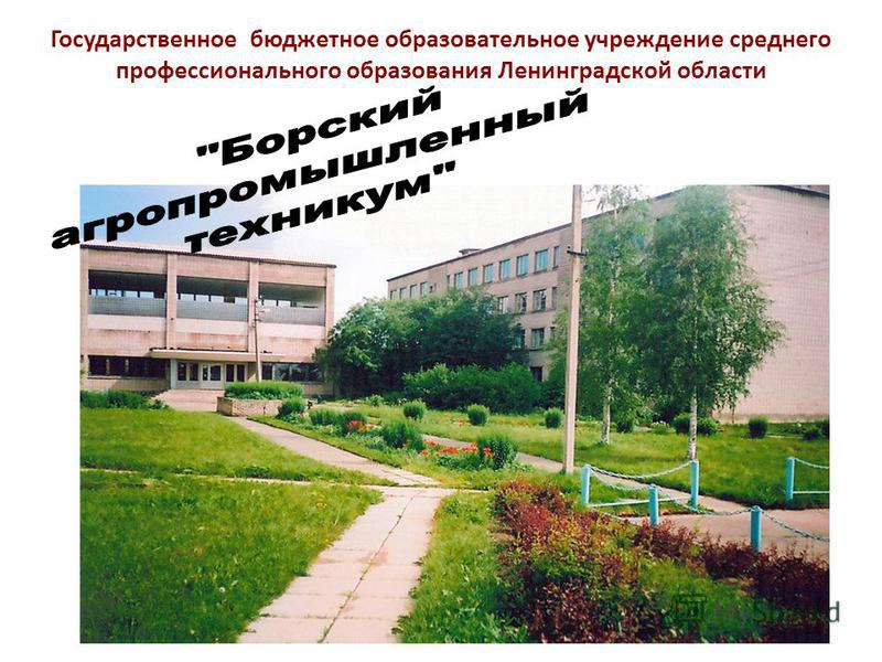 Государственное бюджетное образовательное учреждение среднего профессионального образования Ленинградской области
