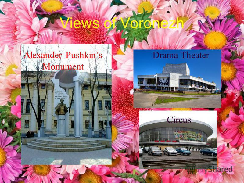 Views of Voronezh Alexander Pushkins Monument Drama Theater Circus