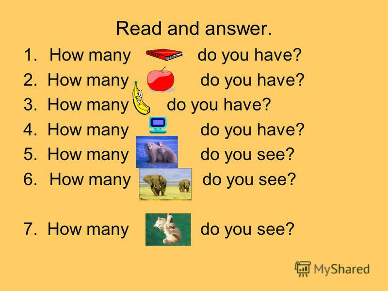 Read and answer. 1. How many do you have? 2. How many do you have? 3. How many do you have? 4. How many do you have? 5. How many do you see? 6. How many do you see? 7. How many do you see?