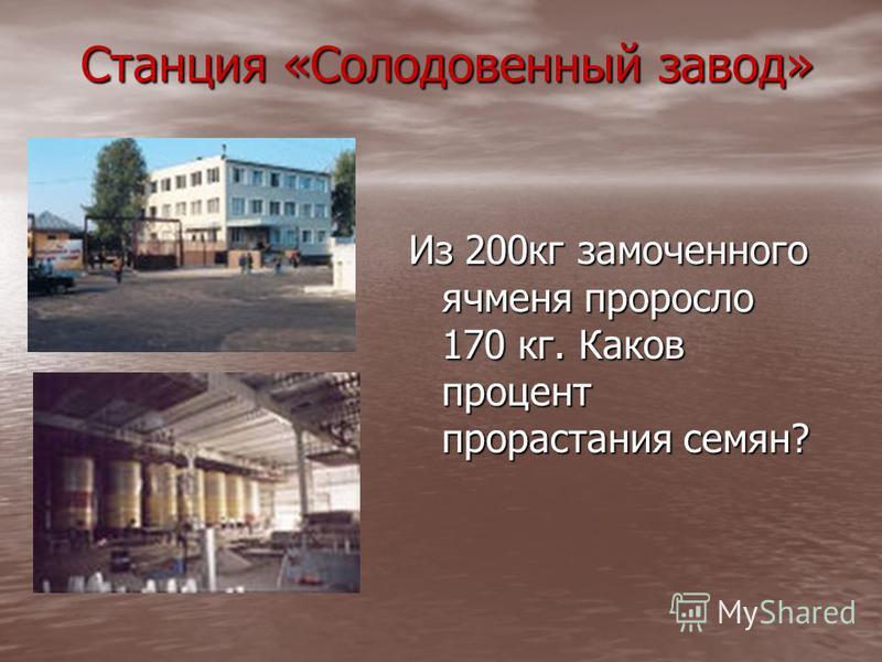 Станция «Солодовенный завод» Станция «Солодовенный завод» Из 200 кг замоченного ячменя проросло 170 кг. Каков процент прорастания семян?