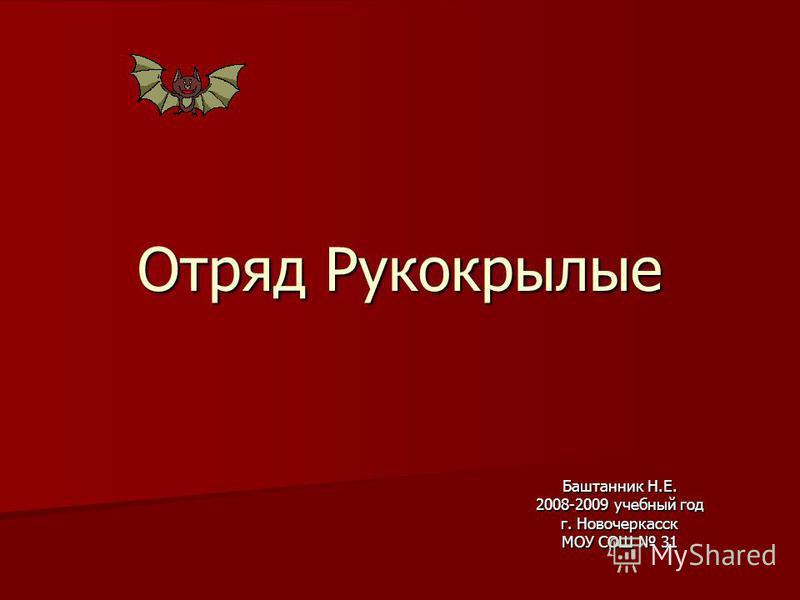 Отряд Рукокрылые Баштанник Н.Е. 2008-2009 учебный год г. Новочеркасск МОУ СОШ 31