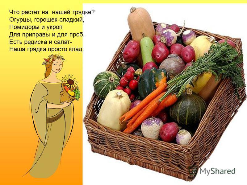 Что растет на нашей грядке? Огурцы, горошек сладкий, Помидоры и укроп Для приправы и для проб. Есть редиска и салат- Наша грядка просто клад.