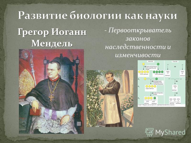 Грегор Иоганн Мендель - Первооткрыватель законов наследственности и изменчивости