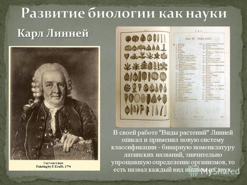 Карл Линней В своей работе Виды растений Линней описал и применил новую систему классификации - бинарную номенклатуру латинских названий, значительно упрощавшую определение организмов, то есть назвал каждый вид именем из двух.