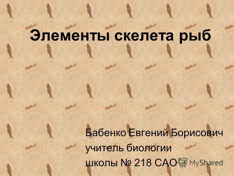 Элементы скелета рыб Бабенко Евгений Борисович учитель биологии школы 218 САО