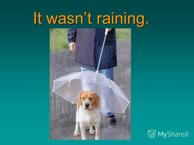 http://bayda5185.narod2.ru It wasnt raining. It wasnt raining.