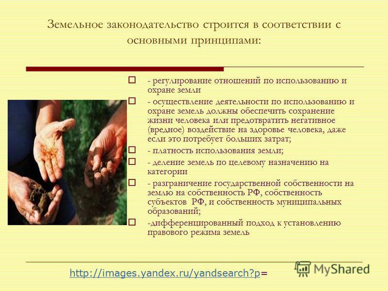 Земельное законодательство строится в соответствии с основными принципами: - регулирование отношений по использованию и охране земли - осуществление деятельности по использованию и охране земель должны обеспечить сохранение жизни человека или предотв