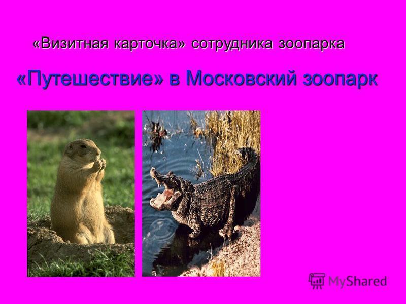 «Визитная карточка» сотрудника зоопарка «Путешествие» в Московский зоопарк