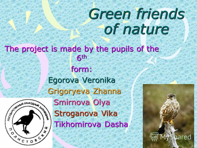 Green friends of nature The project is made by the pupils of the 6 th form: Egorova Veronika Grigoryeva Zhanna Grigoryeva Zhanna Smirnova Olya Stroganova Vika Stroganova Vika Tikhomirova Dasha Tikhomirova Dasha